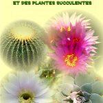 La culture des cactées et des plantes succulentes