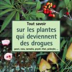 Tout savoir sur les plantes qui deviennent des drogues : pavots