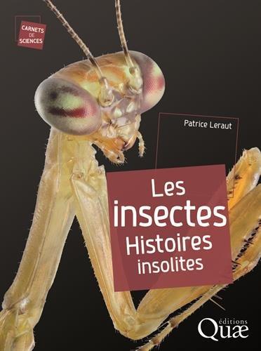 Les insectes : Histoires insolites