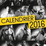Calendrier Harlequin 2016 l'intégrale - 12 mois