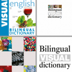 French English Bilingual Visual Dictionary Nouvelle Edition ( Avril 2017 )