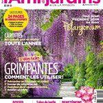 L'Ami Des Jardins N°1079 - Juin 2017
