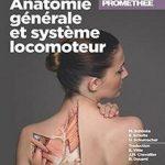 Atlas d'anatomie Prométhée : Anatomie générale et système locomoteur [extrait]