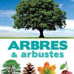 Encyclopédie visuelle des arbres & arbustes