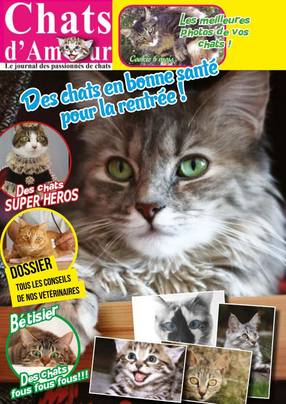 Chats d'Amour N°38 – Septembre-Octobre 2015
