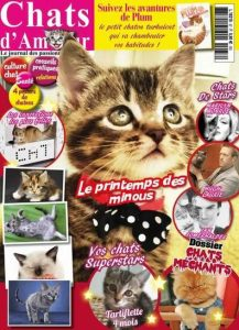Chats D'Amour N°37