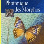Photonique Des Morphos - Springer