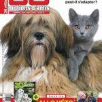 30 Millions D'amis N°328 - Avril 2015