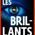 Marcus Sakey - Les Brillants (2015)