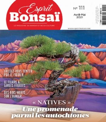 Esprit Bonsaï N°111 – Avril-Mai 2021